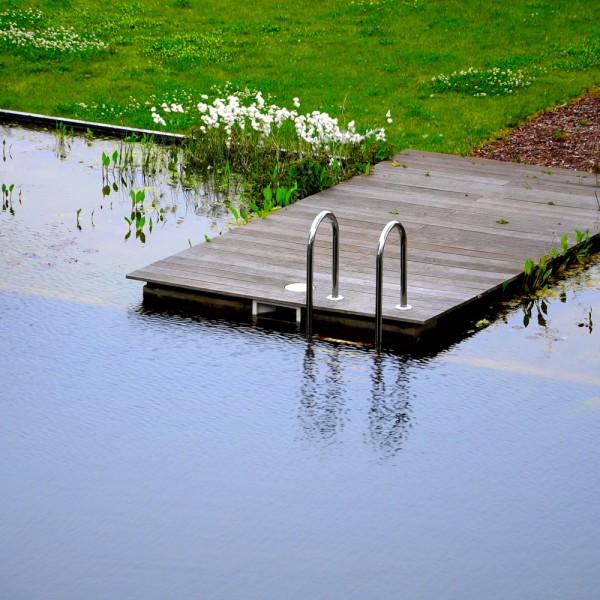 schwimmteich-im-garten-planung-bau-und-reinigung