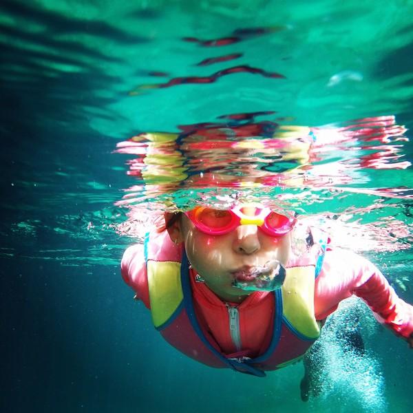 der-badespass-im-eigenen-schwimmteich