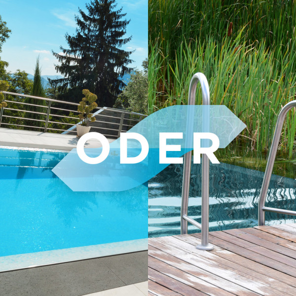 blauteich-ratgeber-natulpool-swimming-pool