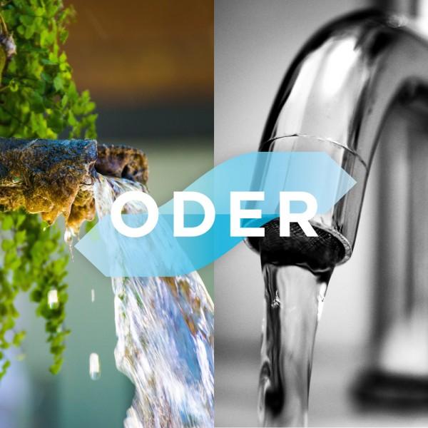 blauteich-ratgeber-brunnenwasser-oder-leitungswasser-in-teich